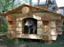 Делаем домик для собаки